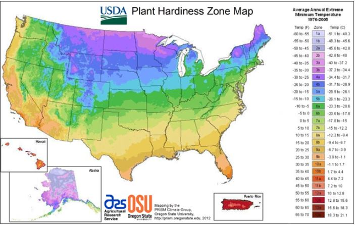 How to Plant in Your Climate-Friendly Garden
