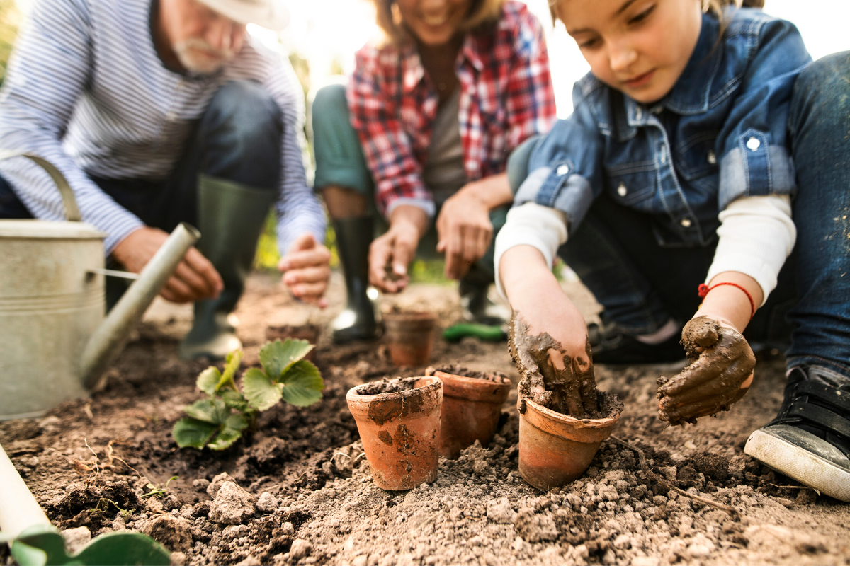 Family planting a garden together